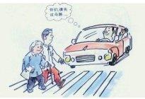 右转车不让行人,违法!