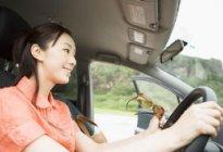 经验交流:新手上路开车有哪些小技巧