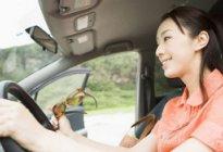 学驾心得:晕车的人学开车怎么办