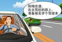 科四总结丨法律法规及道路交通信号:驾驶行为规范要求