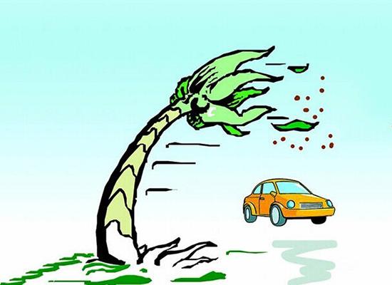 开车上路,一路顺顺利利是最好。就怕遇到一些意外状况,若是人为因素还是可控可避免的,可有时候遇到一些不可抗力因素比如风,又该如何应对呢? 遇大风驾驶技巧 大风中行车时应适当放慢车速,正确地辨认风向,握稳方向盘,防止行驶路线因风力而偏移。注意车辆的横向稳定性,尽量减少超车,鸣喇叭时应适当延长时间。 逆风行驶时,应注意风向突然改变或道路出现较大弯度,风阻突然减少,会使车速猛然增大。行车中,应预防行人为躲避车辆行驶扬起的尘土,在车辆临近时突然跑向道路的另一边。 风沙天转弯,应打开前小灯,勤鸣喇叭,以引起行人、车
