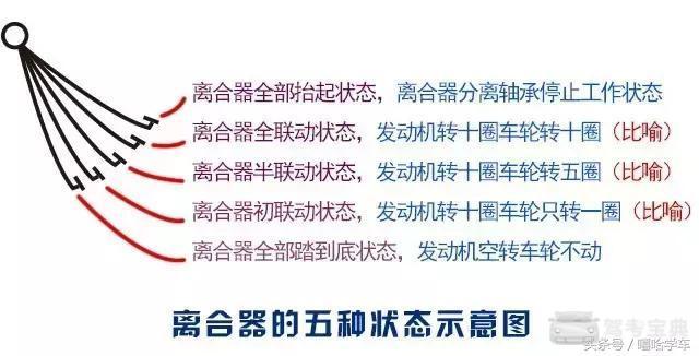 必威app手机下载版 12