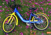 永安行共享单车怎么收费每小时多少钱?永安行租车收费标准