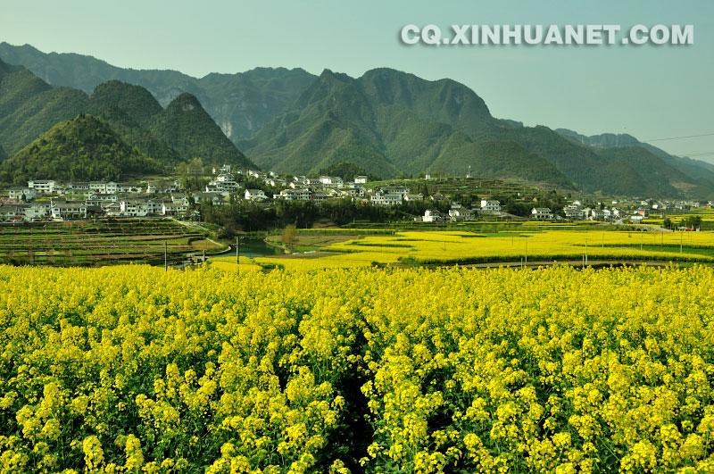 """自驾到""""云贵小江南""""—贵州湄潭徜徉万亩茶海吧"""