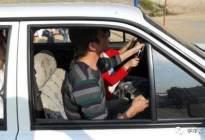 驾驶技巧:科目二 + 科目三最容易失分的细节,不注意,100分扣光
