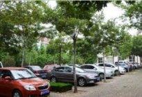 宏安驾校:露天停车注意事项有哪些