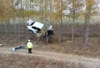 男车主把汽车当飞机开,别人开车上路,而他开车是上树!不得不服