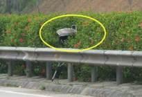 春节开车上高速,一定要认识的摄像头,不然过完年分也就被扣没了
