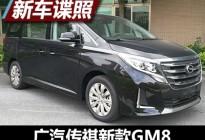 外观细节变化 广汽传祺新款GM8申报图