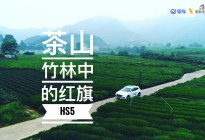 茶山竹林中的红旗HS5 | 爽爽侃车