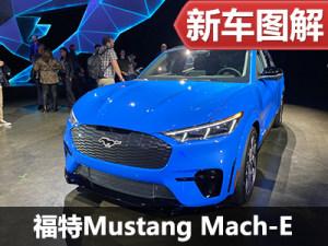 既快且持久 实拍福特Mustang Mach-E