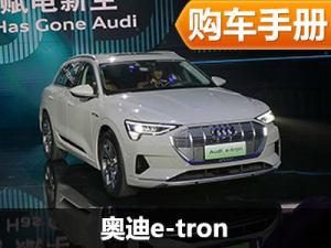 开启电气化之旅 奥迪e-tron新车解读