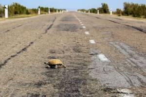 在希腊开200万的保时捷911迄今为止最爽也最累试驾体验