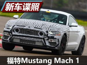 將于年內發布 福特Mustang Mach 1諜照