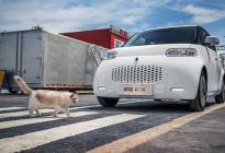 大狗白猫野马捷豹熊猫 盘一下那些以动物命名的车
