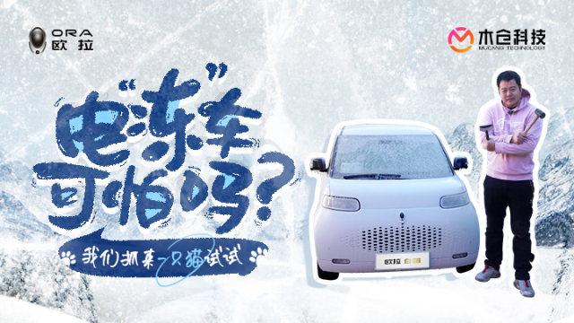"""电""""冻""""车可怕么?我们抓来一只猫试试"""