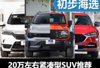 实力派偶像争天下 20万元紧凑型SUV海选