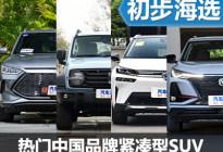 选择更多样 热门中国品牌紧凑型SUV推荐