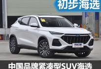 年轻又实惠 中国品牌紧凑型SUV海选