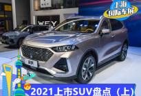 重点车型真不少 2021年将上市SUV(上)