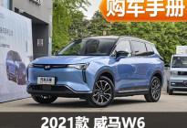 推荐620km ACE极智版 威马W6购车手册