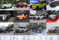 揽境/ID.6 X/奔驰G等 6月12款新车汇总