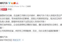 高管建议请吴亦凡代言被开除 哪吒汽车为营销不择手段?